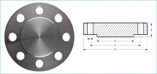 Blind Pipe Flange Raise Face | Supplier of Quality Forged Fittings