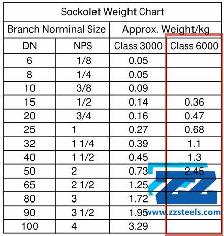Stainless Steel Sockolet Class 6000 ASTM A182 F316 MSS SP-97 | ZIZI